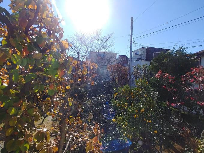 小日向ハウス:2階から見えるお庭で季節を感じる!